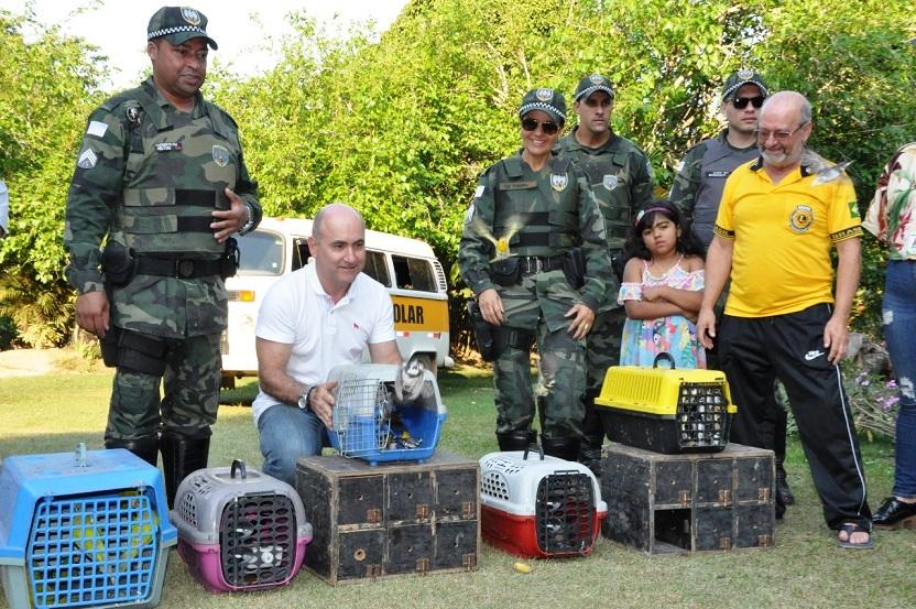 Livres: Secretaria de Meio Ambiente realiza soltura de quase 200 animais silvestres em Guaçuí
